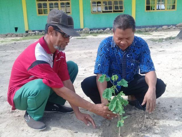 Madrasah Aliyah Ponpes Maniling Bulo-Bulo, Giat Tanam Pohon