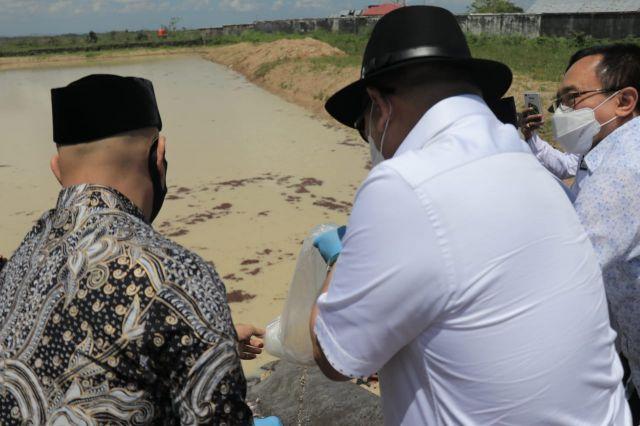 Ketua DPD RI LaNyalla Dorong Pengolahan Udang Jadi Komiditi Prioritas